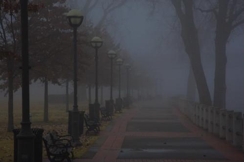 River Front Fog
