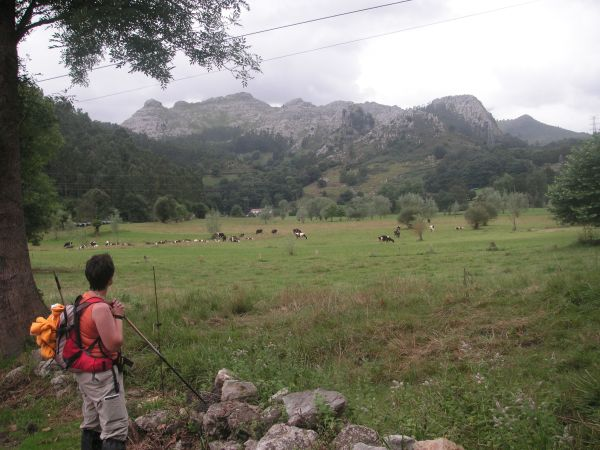 Vista de los Picos de Busampiro (Cantabria)
