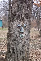 franks_tree_face