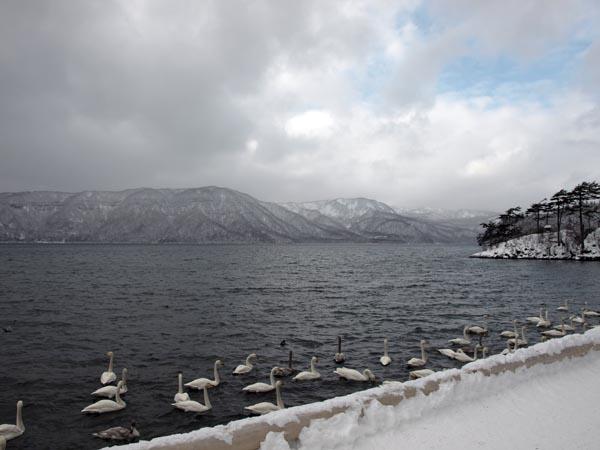 2008年1月 十和田湖 2