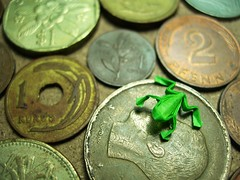 coins and frog