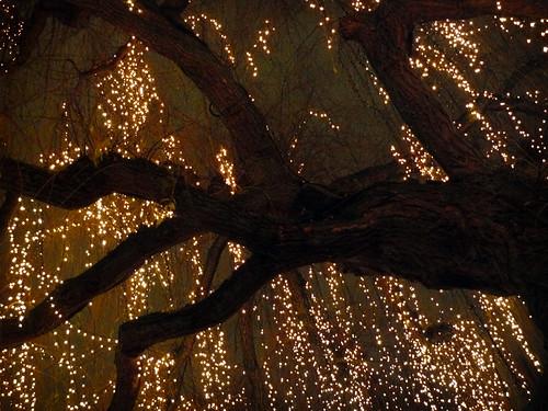Tivoli Christmas Market 2008