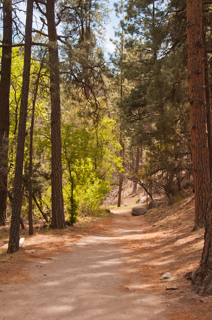 The path back to the visitor centre from Alcove House, Bandelier National Monument