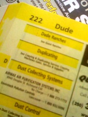 Dude in the Yellow Pages