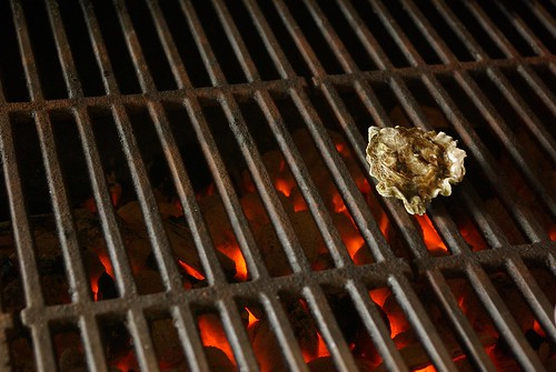 grilling an oyster