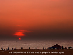 The purpose of life...