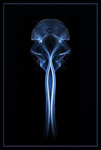 "Alien Organics (Smoke ""Art"") by PixelPlacebo"