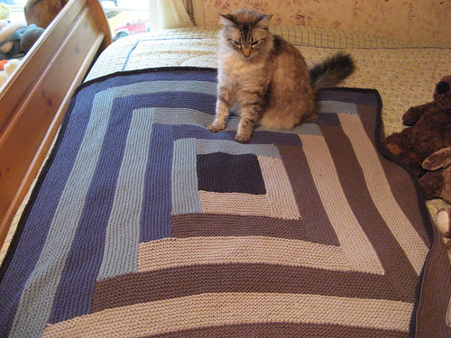 Moms cat Mulan shown here for size.  Or because I couldnt get her off the blanket.