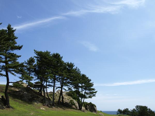 種差海岸 4