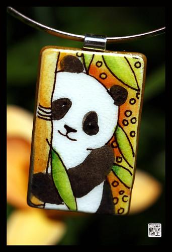PROJECT PANDA , Pandarazzi contest winner today!!