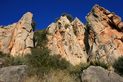 Castellet (Potros)