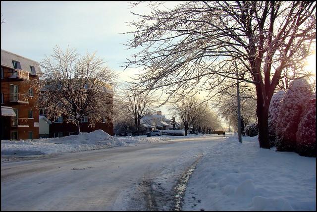 Ma rue... le lendemain de la tempête