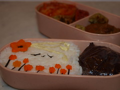 Vegetarian, Bento, Recipes, Zoé