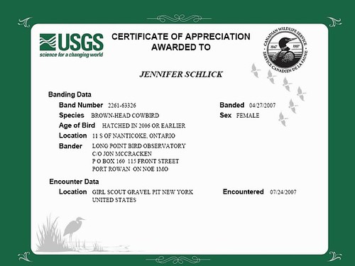 Bird Band Certificate