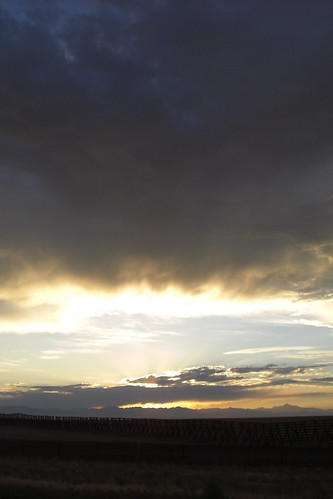 Fence Against Sunset