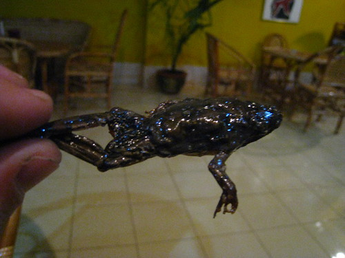 Crispy Frog