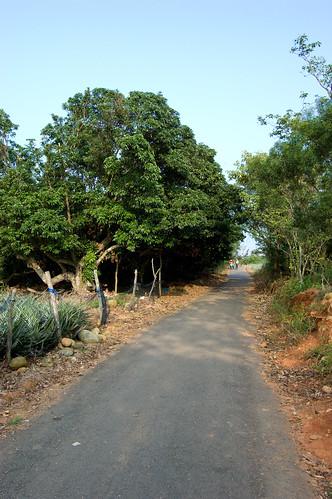 Tengshan Path