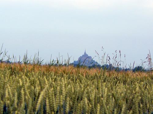 IDans le fond, le Mont-Saint-Michel