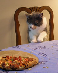 Pauline thinks she's a sneaky pizza eater.