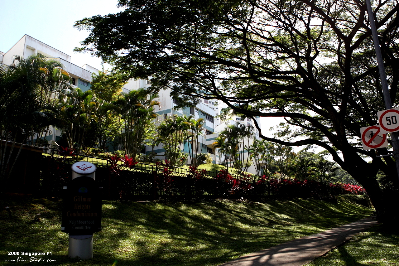2008 新加坡F1自由行-聖淘沙.F1排位賽 @ 法小金*開箱趣 :: 痞客邦