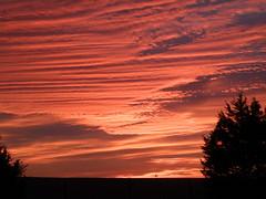 #1 morning sky jan 23
