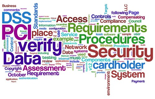 Information Security Wordle: PCI DSS v1.2 (try #2) by purpleslog