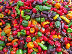 Colorful veggies for sale in Daley Plaza