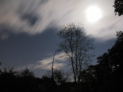 Clouds Across The Moon 2