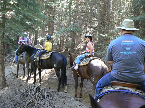 Horse back riding in Sequoia National Forest