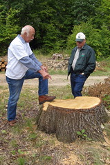 Host Bob Sonnenberg and event chair Chuck Erickson discuss the 100-year-old oak cut from this site. (MFA photo)
