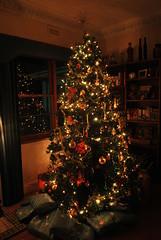 Merry Chrimbo!