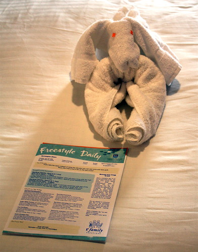 I Love the Towel Animals!