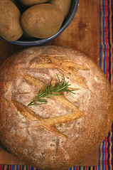 rosemary olive oil potato bread