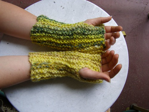 plant tomatoes mitts