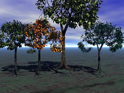 Lion's Trees