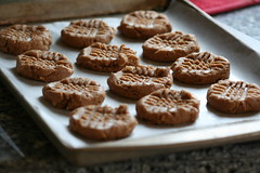 cinnamon almond butter cookies