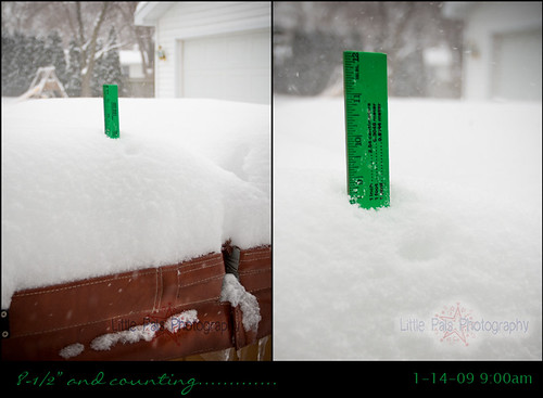 Snow1-14-09