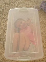 Madison in a box