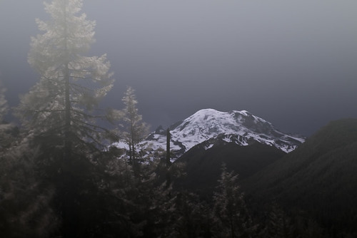 Mt. Rainier dreams