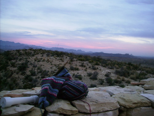 Sock basking in sunset