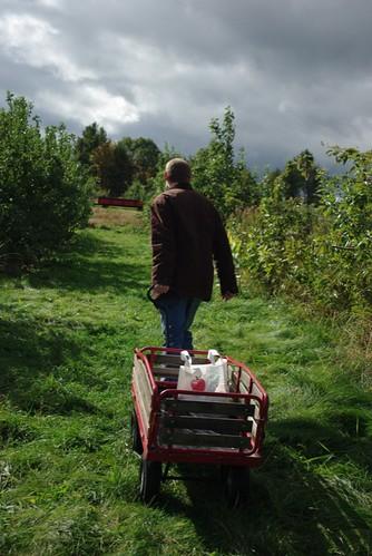 Hauling the Harvest