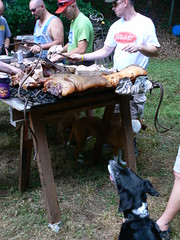 Pig Pickin' - Chopping 7