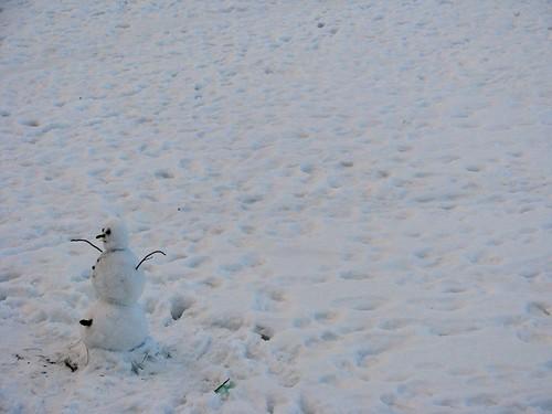 snow perv