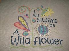 wildflower 001