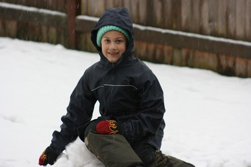 Snowy T