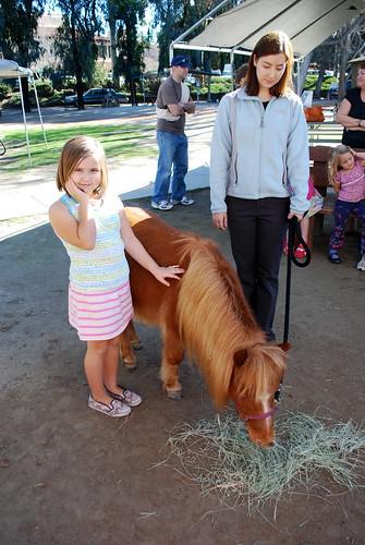 margie pets a teeny horse