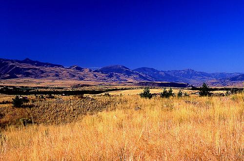 Paradise Valley, Montana. (Kodak Ektachrome E100VS. Nikon F100. Epson V500.)