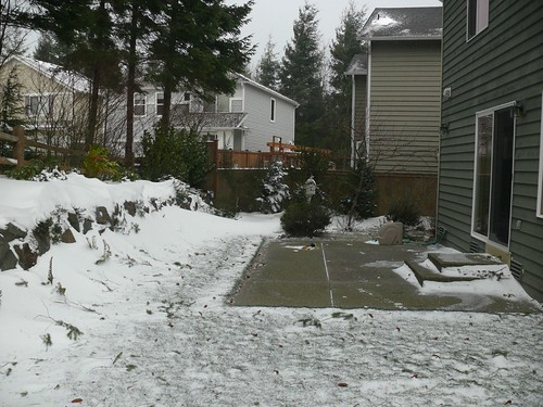 The snow on the back yard was scoured away by the high winds.