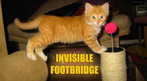 20080409 - Oranjello - 153-5395 - Invisible foot bridge LOLcat