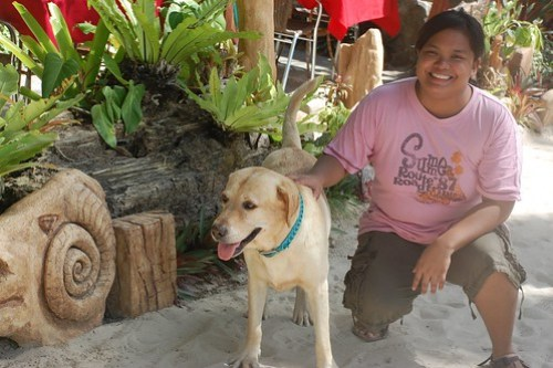 Boracay Dog with Gail
